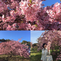 春の足音  part2の記事に添付されている画像