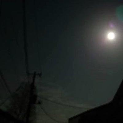 スーパームーン  ~満月になった「アル君」と、「エド君」と、病気療養中の「ウィンの記事に添付されている画像