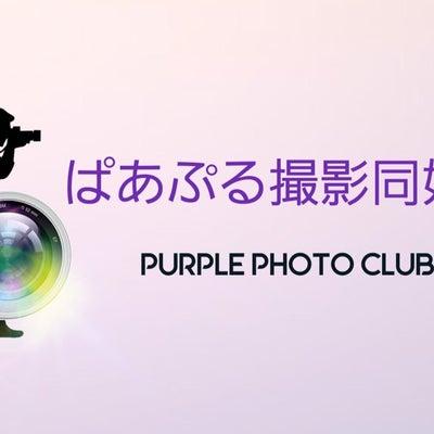 ぱあぷる撮影同好会3月は23日(土)開催!の記事に添付されている画像