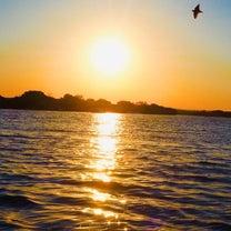 ザンベジ川リバークルーズは夕陽が素晴らしい‼︎の記事に添付されている画像
