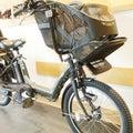 電動自転車デビューの画像