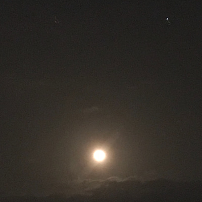 お月さんの記事に添付されている画像