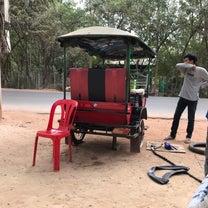 2019春節旅行 カンボジア⑦5日目 前編 アンコールトム、タプロームの記事に添付されている画像