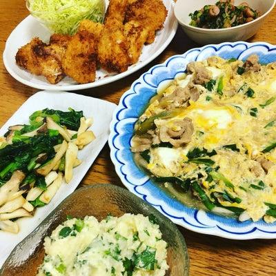 夕ご飯の記事に添付されている画像