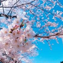 春の予感とイライラが止まらない日の記事に添付されている画像