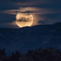 【乙女座満月】~それぞれに活かして一つにしよう~の記事に添付されている画像