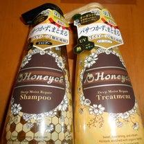 オーガニックハチミツ配合「ハニーチェ」がダメージヘアを徹底補修!の記事に添付されている画像