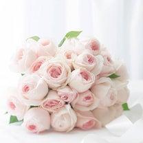 ありがとうの花♫の記事に添付されている画像