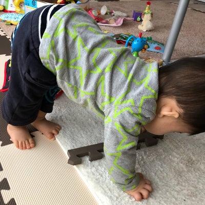 0歳8ヶ月のヨガの記事に添付されている画像