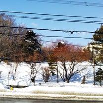 春を迎える北海道の問題点の記事に添付されている画像