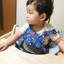 【1y3m0d】月●万円食生活!?の記事に添付されている画像