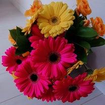 東雲歩さんからのお花とお手紙!の記事に添付されている画像