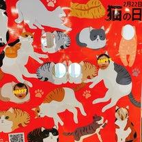 今日15時〆切!猫の日開催、無料相談会^_^の記事に添付されている画像