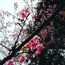 3月末まで【LINE@限定コース】花粉症&冷え、むくみ対策に!体質改善氣流し&腸の記事に添付されている画像