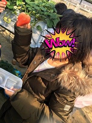 o0303040414359881849 - ☆2019.2.17(日)☆toiro西谷☆