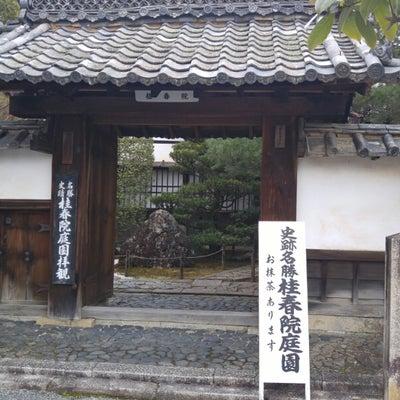 京都市 妙心寺塔頭桂春院の記事に添付されている画像