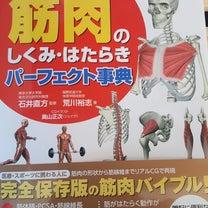 筋肉のしくみ・はたらきパーフェクト事典の記事に添付されている画像