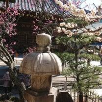 成田山へお参りにの記事に添付されている画像