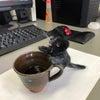 黒猫のタンゴの画像