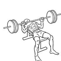 2月21日(木)胸のトレーニングの記事に添付されている画像