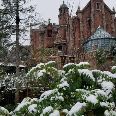 2/11  雪の中での9回目のハピエストサプライズ☆の記事に添付されている画像