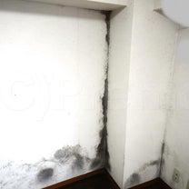 カビ発生の賃貸住宅には防カビ工事をお考え下さいの記事に添付されている画像