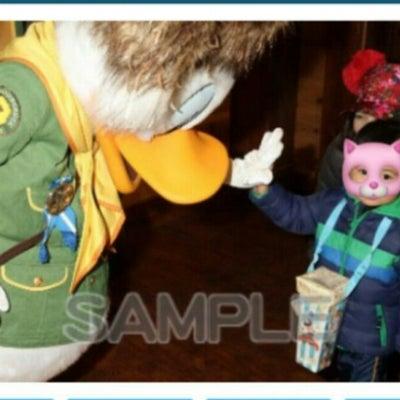 【2019.2お泊まりディズニー】健忘録⑦ウッドチャックグリの記事に添付されている画像