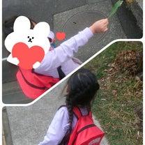 学校への記事に添付されている画像
