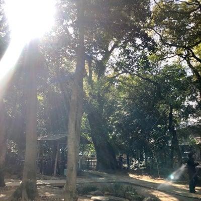 福岡へ戻りました。の記事に添付されている画像