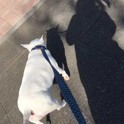 昼ン歩つきあってあげるネ!の記事に添付されている画像