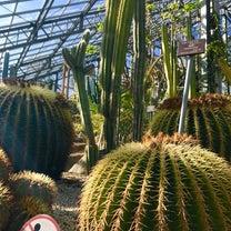 つくば植物園の魅力を探したい!!の記事に添付されている画像