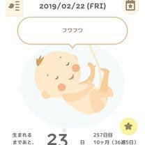 36w4d〜産後ヘルパーさんと打ち合わせ〜の記事に添付されている画像