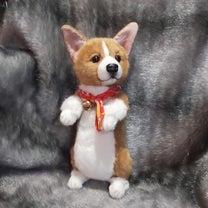 『   コーギー仔犬 完成!』の記事に添付されている画像