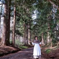 神社の御神木に触る抱きつく行為の記事に添付されている画像