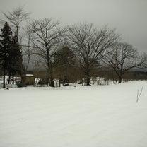 春の伐採 シーズン開幕の記事に添付されている画像
