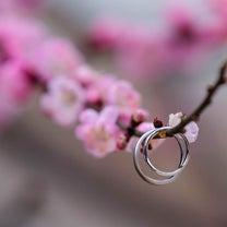 京都 北野天満宮での結婚式 出張撮影の記事に添付されている画像