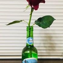 バラの花一輪の記事に添付されている画像