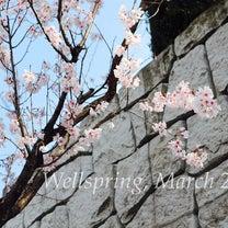 【募集】ワークショップ/〈怒〉の出やすい春に「家族へのイライラを解消するヒント」の記事に添付されている画像