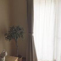 カーテンの断捨離、遮像からミラーカーテンへ変更。の記事に添付されている画像