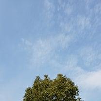 日射しは春を感じますが今日もこの時期らしい気温の大阪!の記事に添付されている画像
