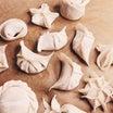 饺子を作る