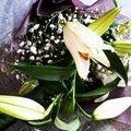 #素敵なお花の画像