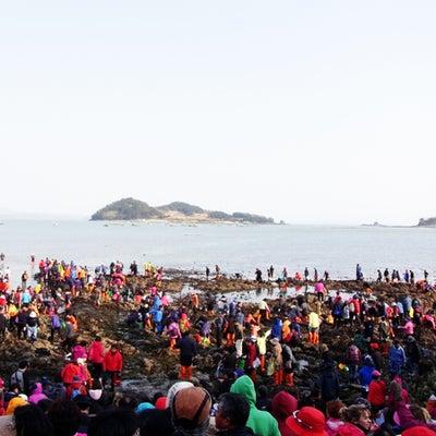 珍島の海割れの記事に添付されている画像