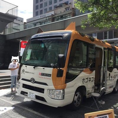 限定ネコバスと、北野ののらにゃん少しと、気になるお店と #神戸 三宮・北野・トアの記事に添付されている画像
