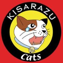 今日はネコの日♡の記事に添付されている画像