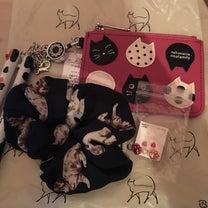 猫の日♡鎌倉猫サロン♡の記事に添付されている画像