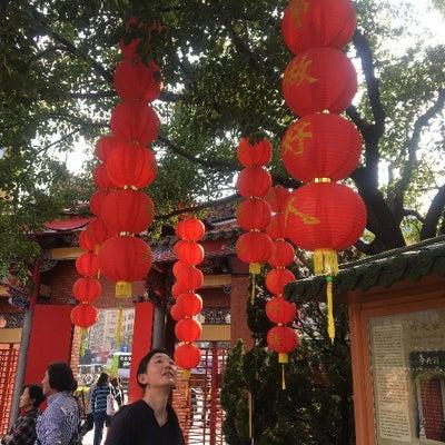 お茶農家大人女子茶旅@台湾の記事に添付されている画像
