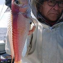 2月23日 五目釣りの記事に添付されている画像