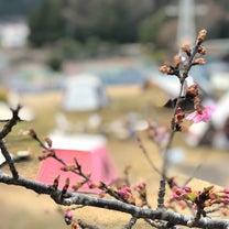 【春よ来い】の記事に添付されている画像