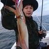 釣れてるケンサキの画像
